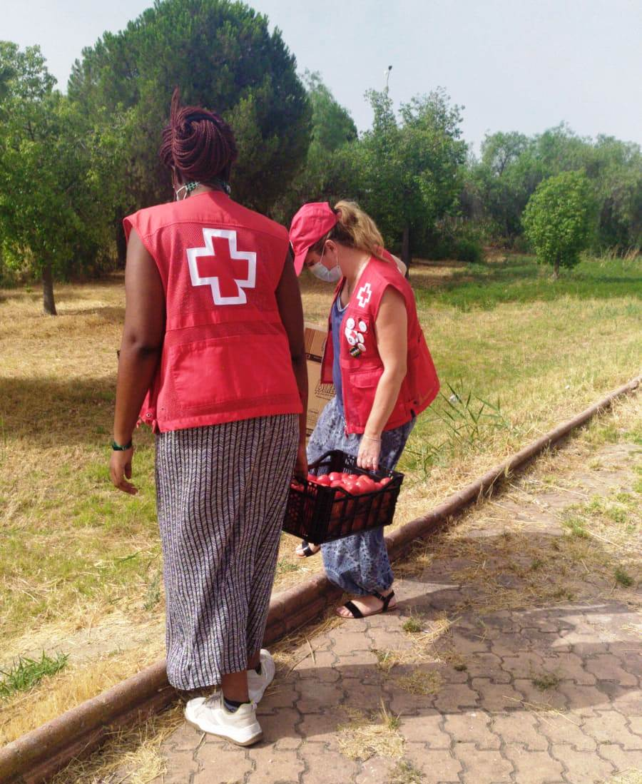 Gracias a la donación semanal de fruta y verduras que recibimos en @CruzRojaSevilla, nuestro equipo de Asentamientos atiende con productos frescos a las personas que más lo necesitan #CruzRojaResponde #ProtegerLaHumanidadpic.twitter.com/Z5lDjv1bwu