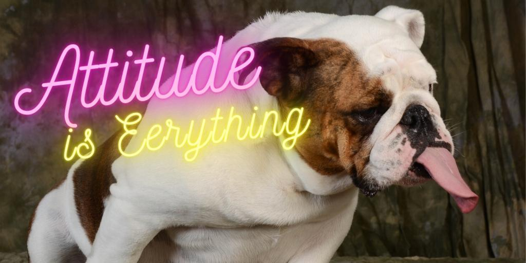 It's important to know that attitude is everything, and it's vital to know that a positive attitude will go a long way when it comes to your customer service overall. inspiretothrive.com/awesome-client… #InspireToThrive