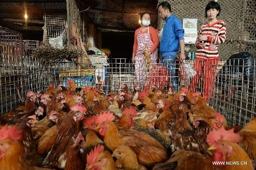 #China will close all live poultry markets in a step-by-step manner in a bid to reduce public health risks, an official said Friday. https://t.co/reIvHVTOYN
