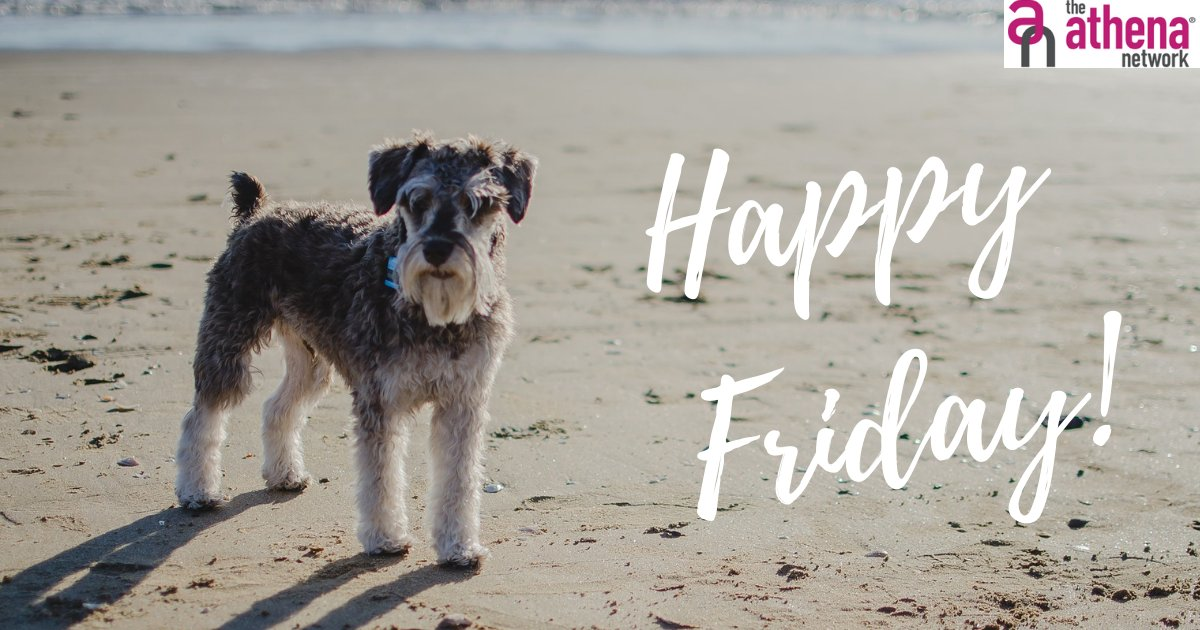 What have you got planned for the weekend?  Have you booked your place at one of our meetings for July yet? If not, now would be a great time to do so.  #FridayFunday #Weekend #FridayFeeling #Enjoy #Relax #Share #womeninbusiness #athenanetwork #femaleentrepreneur https://t.co/LRLPkhB7ij