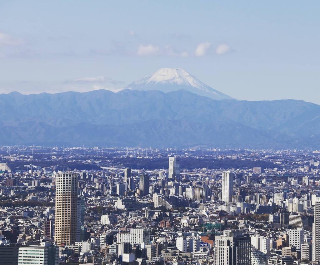 Amazing view of Mount Fuji and Tokyo. #tokyo  • • • #travel #travelling #toptags #vacation #visiting #traveler #instatravel #wanderlust #trip #holiday #photooftheday #lifeofadventure #doyoutravel #tourism #tourist #instapassport #instatravelin… https://instagr.am/p/CCLuuaFBise/pic.twitter.com/APWDBkoj5F