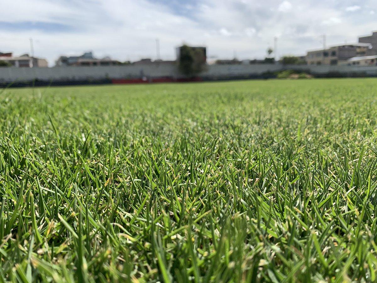 Lindo 😍 muy lindo ‼️ Se acerca el día de volver 🏃🏾♂️ y la cancha 🌿 de la Ciudad Deportiva Ney Mancheno Velasco lo sabe 😉 ¡Todo es posible 🤝 si estamos unidos! 📱https://t.co/HpzTy53D8p 🔵 #SDQuitoProtegido 🗓 https://t.co/eTPfcMnxdA