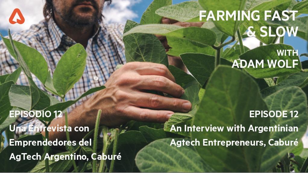 Image for the Tweet beginning: Se viene... Farming Fast &