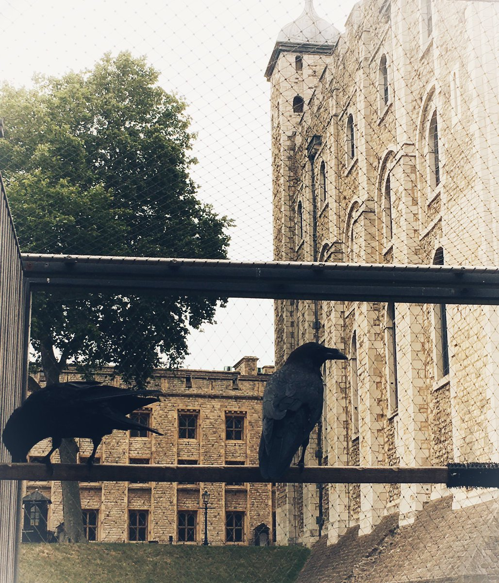 Yeoman Warder Shady Lane & I have just put the ravens to bed for the night at the Tower of London which means, I'm happy to say, that THE KINGDOM IS SAFE.