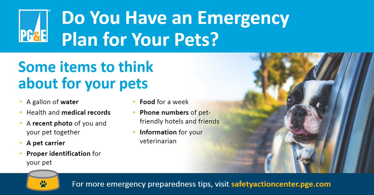 Is your whole family prepared in case of an emergency? Get tips for planning for your pets and ensure that your whole family is ready for an emergency: https://t.co/HzWdoDGtf2 #PetPreparedness https://t.co/V7QSXekvJQ