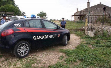 Scoperta dai carabinieri piantagione di droga a Partinico, un arresto - https://t.co/BejEWDk8aw #blogsicilianotizie