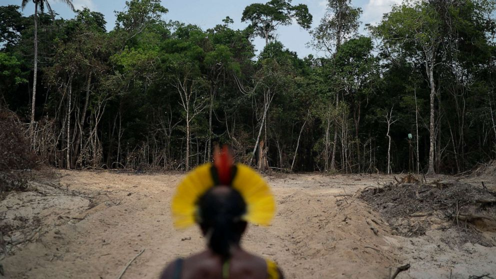 We are in danger of extinction. If one of us got the virus in a remote community and starts the contagion it will be the death of us . . . it will be a genocide. This is my biggest fear. @aidesep_org #COVID19 @amazonwatch @Survival abcn.ws/2ZDF86J