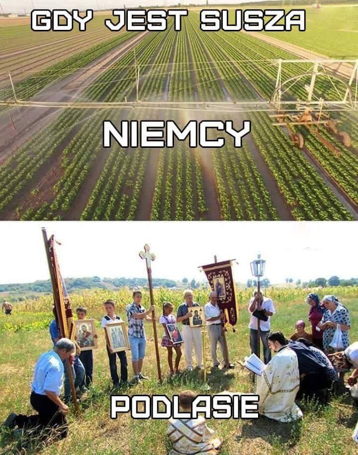 Złoto. #memeoftheday #dailymemes #Podlasiepic.twitter.com/L8fAZ2FqU5