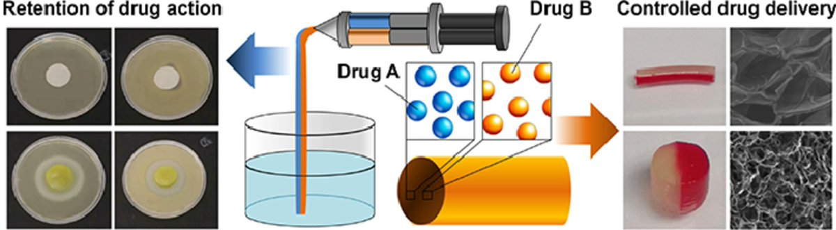#Alginate-based complex #fibers with the Janus morphology for controlled release of co-delivered drugs https://www.pharmaexcipients.com/news/alginate-fibers-janus-morph/…pic.twitter.com/XaCDl4jagJ