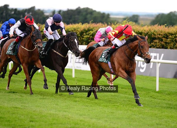 Sarsfield is the word and favourite backers collect @NavanRacecourse irishracing.com/news?prid=2095…