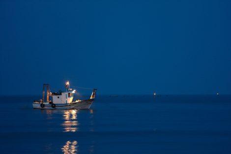 DL Rilancio, via libera al bonus di 950 euro per i pescatori autonomi - https://t.co/VBK8A5dl5Z #blogsicilia #dlrilancio #pesca #pescatori