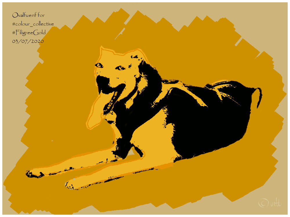 Not in time but at least less to late than other days I submit a dog for today's #colour_collective topic #FiligreeGold. Keep safe and sound friends, it's not over jet! pic.twitter.com/yLIs3IXgKc