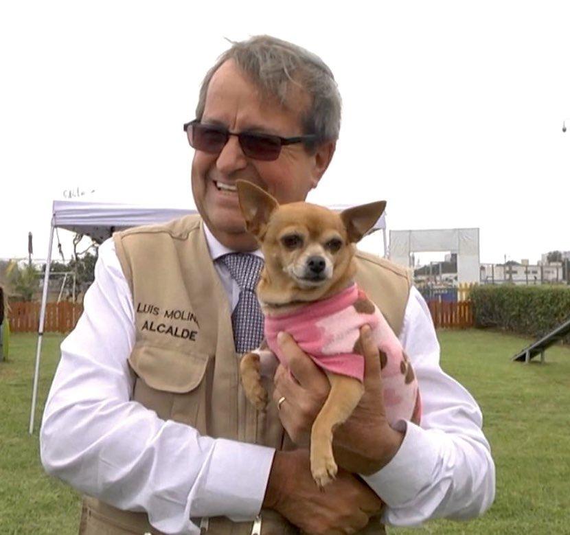 ¡ORGULLOSOS DE SER PET FRIENDLY! Hace un año inauguramos nuestra Veterinaria Municipal dirigida a la Salud Pública y la Patrulla de Rescate de Mascotas de #Miraflores, que brindan un eficiente servicio . pic.twitter.com/8XRdZzcbaw