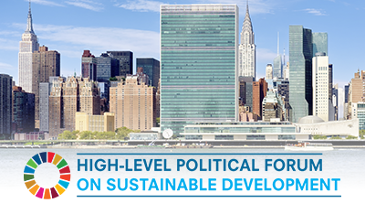 The 2⃣0⃣2⃣0⃣ High-Level Political Forum on #Sustainable Development starts on 7⃣ June!  🌏🌍🌎  As we prepare to #BuildBackBetter from #COVID19, leaders from around the world will discuss how to address challenges and meet the #GlobalGoals.  #HLPF2020  https://t.co/qyLfLHaPRo. https://t.co/DUwtTnN7r2