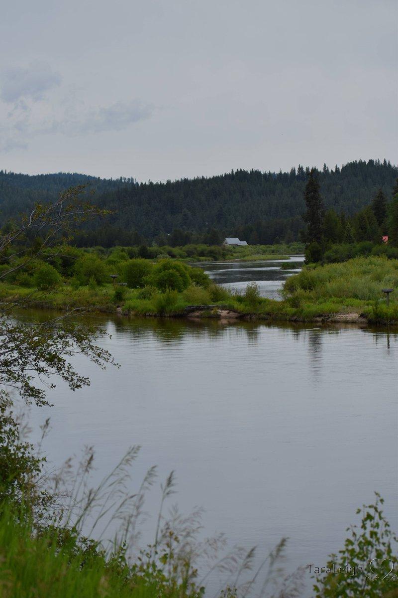 Little River, Idaho #Nikonphotography #Riversandstreams #Idaho #Water #Photography #PNWpic.twitter.com/lZbVYwmNPa