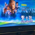 Image for the Tweet beginning: 蒙古建国800年記念作品 『#蒼き狼-地果て海尽きるまで-』 見ました。だいぶと前の映画ですけど素敵でした。評価低いらしいですけど私は好きでした。モンゴル騎兵同士と激突とかヨダレでそうでしたね。