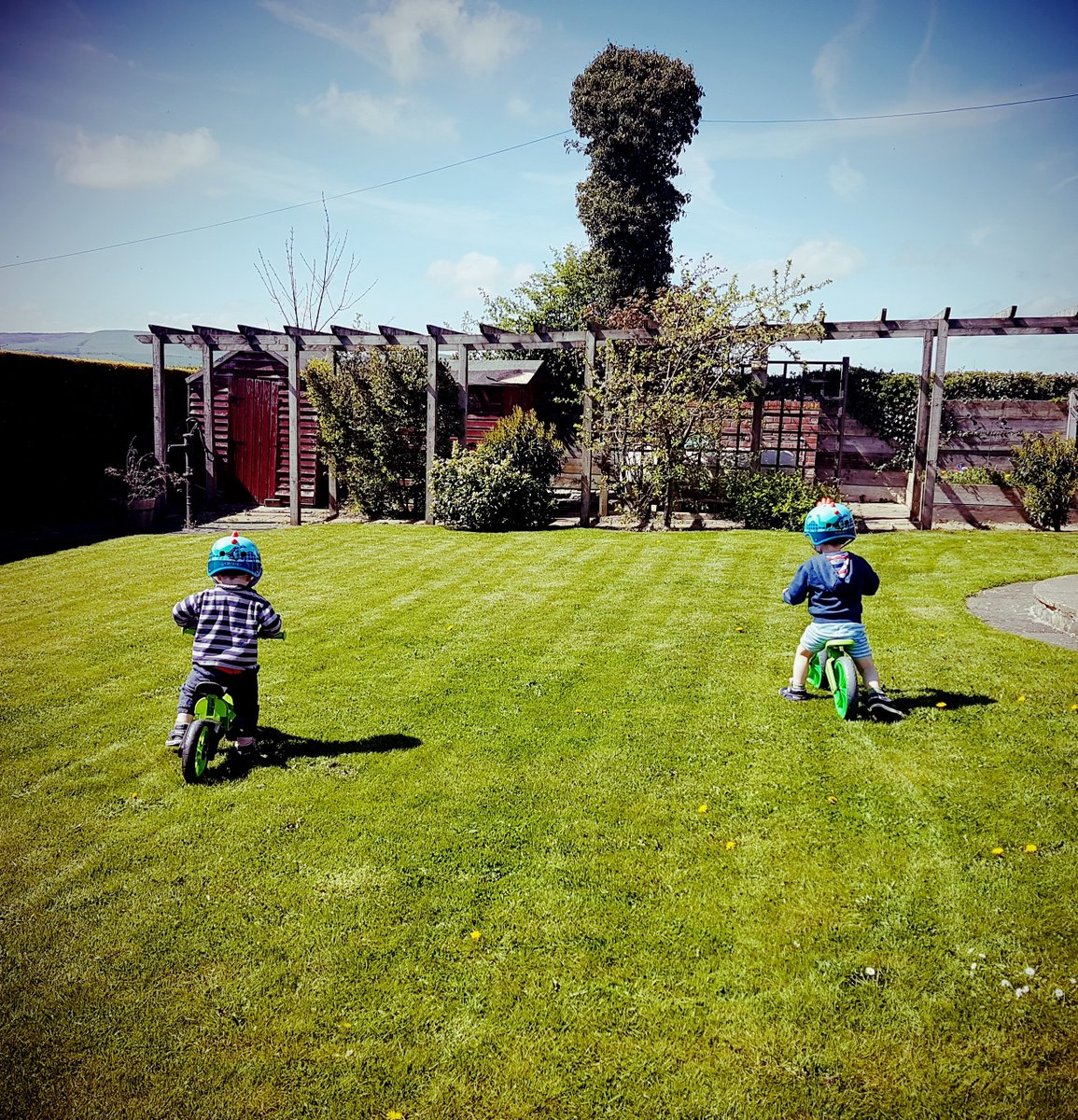 Choosing your child's first bike http://mummyfever.co.uk/choosing-your-childs-first-bike/… #balancebike #bikes #firstbike #outdoorplay pic.twitter.com/txpY2PeFEi