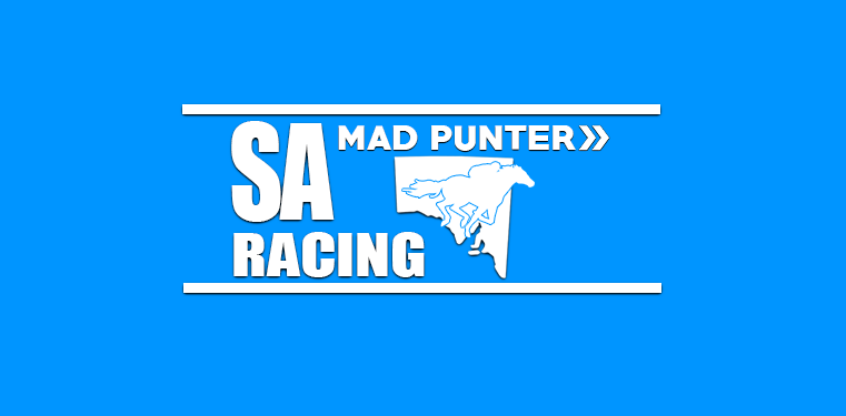 Exciting Saturday at Murray Bridge Looking to get things started in Race 8 with #13 Carlaluisa our man's top pick. Get our preview just here - https://bit.ly/31J5DKkpic.twitter.com/TuyYkY3URr