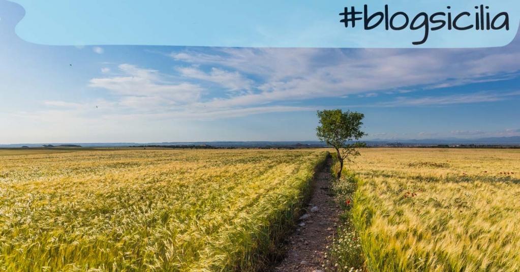 """""""Lentamente muore chi diventa schiavo dell'abitudine"""". Buongiorno da #blogsicilia https://t.co/WCPdHPvS9d"""