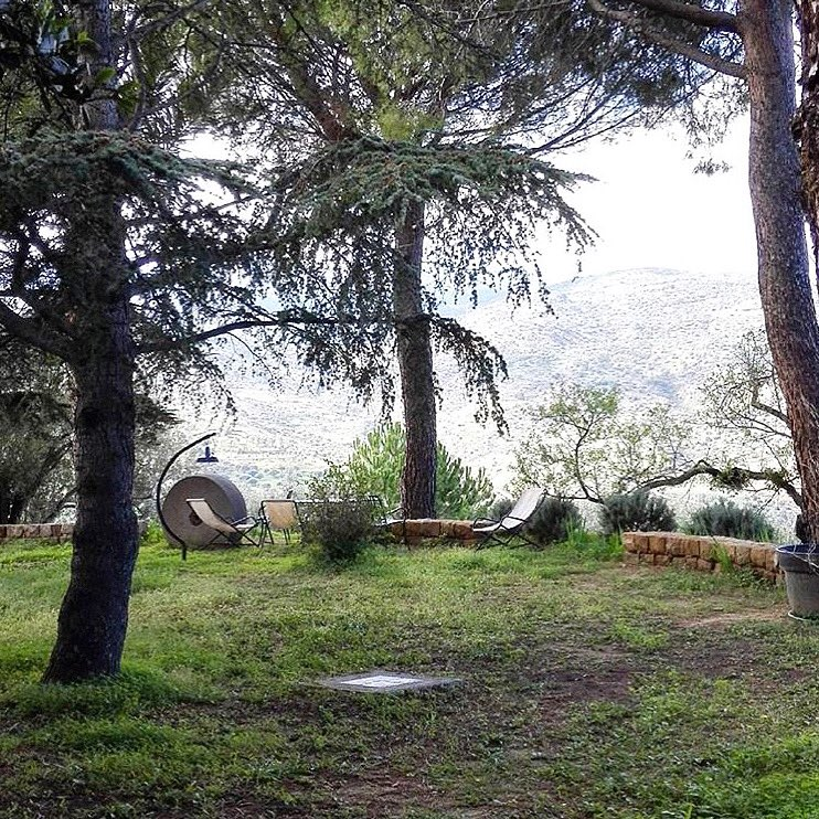 BOUTIQUE FARM HOTEL Enjoy your day! • • • #CasaMigliaca #FarmHotel #CharmingHotel #CharmingPlaces #BoutiqueHotel #Agriturismo #Organic #OrganicFarm #FarmLife #FarmToTableDinner #Agriculture #Vegetarian #Yoga #YogaLife #Meditation #GoodVibes #Vegan #Green #Nature #NatureLoverpic.twitter.com/C8eG6tcG6u