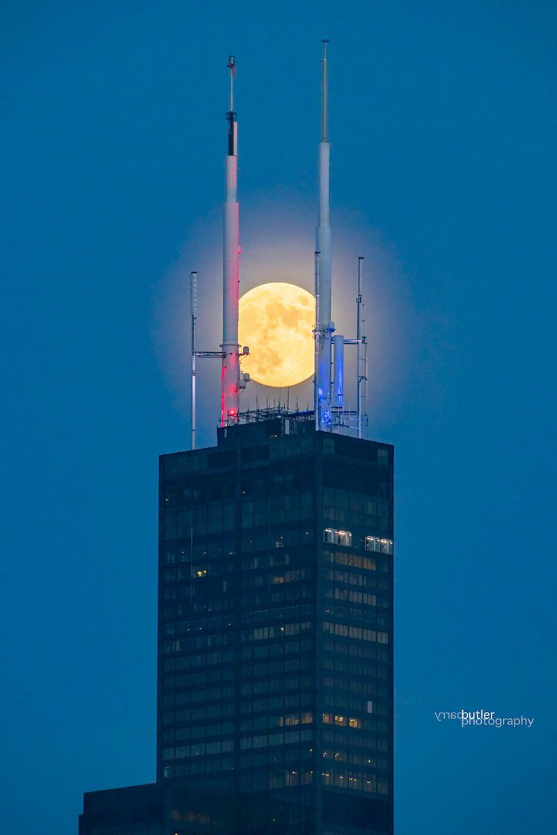 Tight Squeezee. Fridays Full Moon (99%) between the uprights of Chicagos Sears Tower. #weather #news #ilwx #chicago #fullmoon
