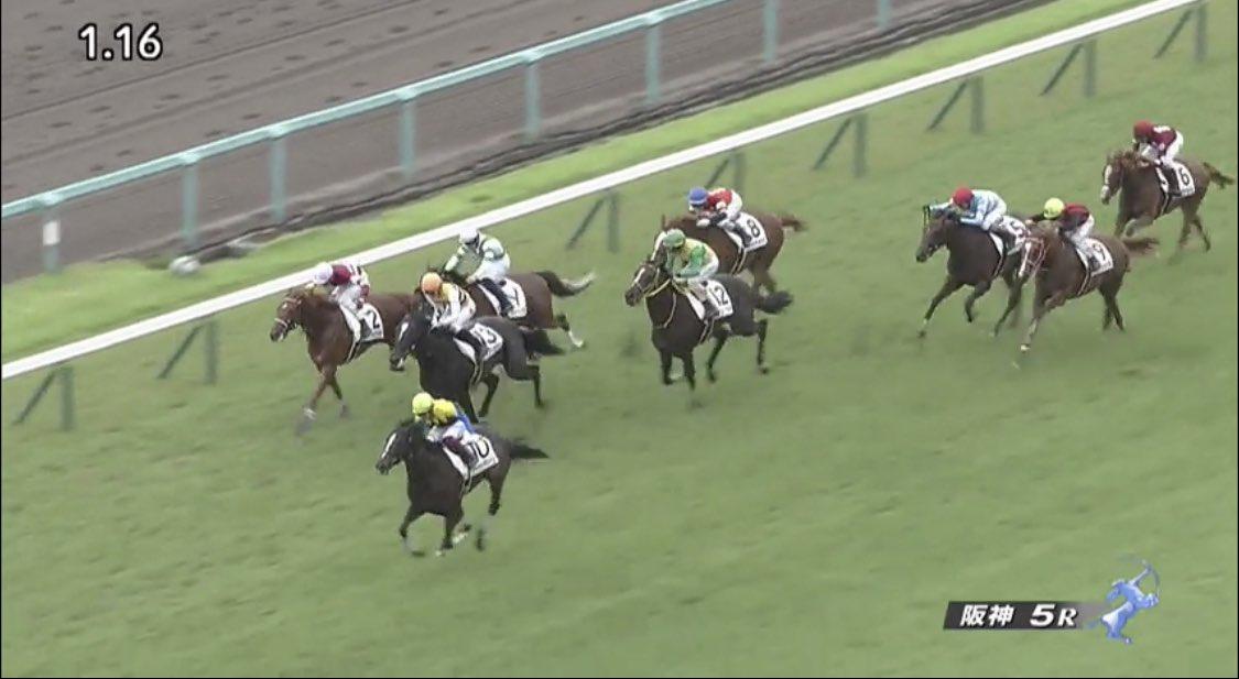 阪神5R 2歳新馬戦を優勝したのは、#ジャカランダレーン!  新種牡馬 #ラブリーデイ 産駒の初勝利!母は、2015年にCBC賞(GIII)を制した #ウリウリ だよ。将来がとっても楽しみだね。おめでとう!  #うまび https://t.co/ityYXGGuUB