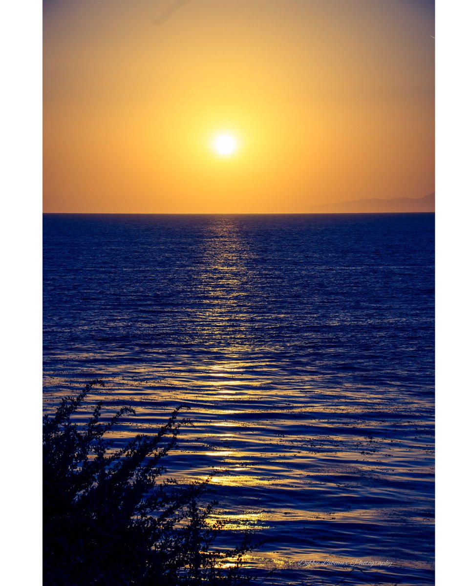 #sunset #PhotoOfTheDay https://t.co/9LciIKsxx4 https://t.co/LQ11ulDeBE