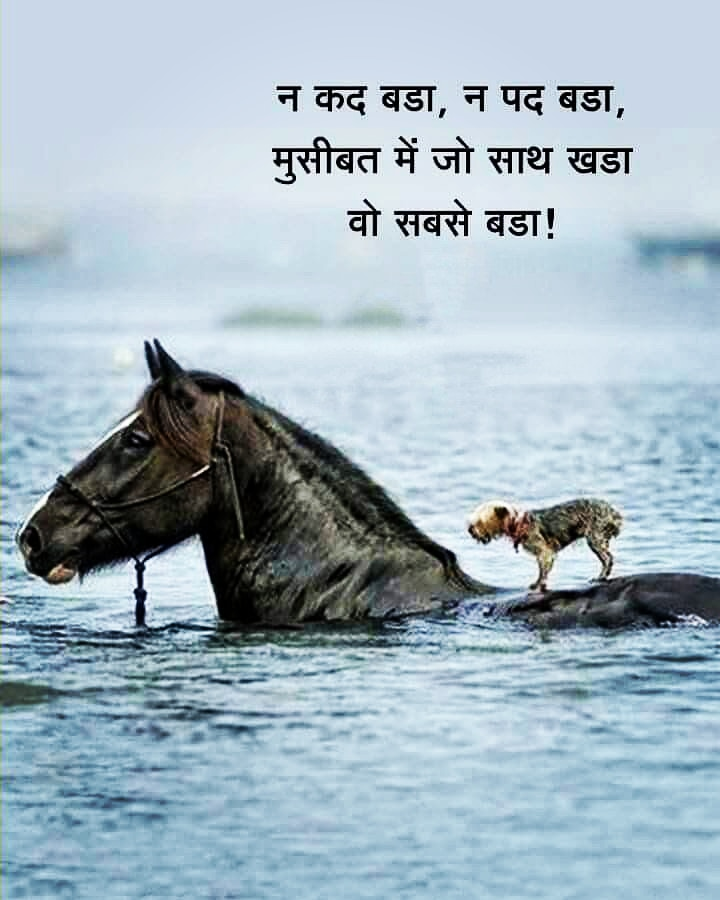 आजका का सुविचार. #AajKaVichar #MorningMotivation #MorningThoughts #GoodThoughts #IndoreRahegaNo1 #IndoreFightsCorona #StayHomeStaySafe #ICareForIndore #IndoreNewslive #IndoreNews #Corona #Covid19 #Unlock2 #Bhopal #Gwalior #Ujjain #Dewas #Neemuch #Mandsour #IndoreCity #Indore https://t.co/lSIsrSJVYK