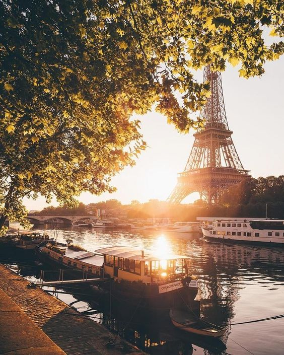 Good morning friends  #photos #morning #sunrise #Paris pic.twitter.com/v3agAjbDCq