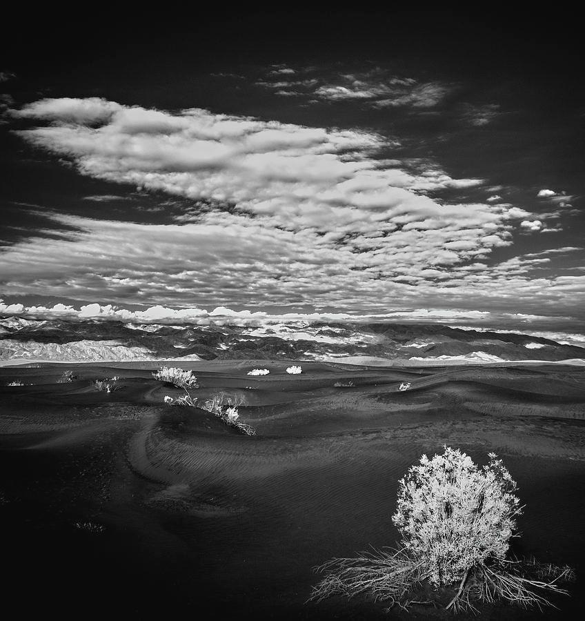 Art for the Eyes!   #art #photography #landscapephotography #blackandwhite #picoftheday #artwork #fineartamerica #fineartforsale #California #desert #naturelovers #nature