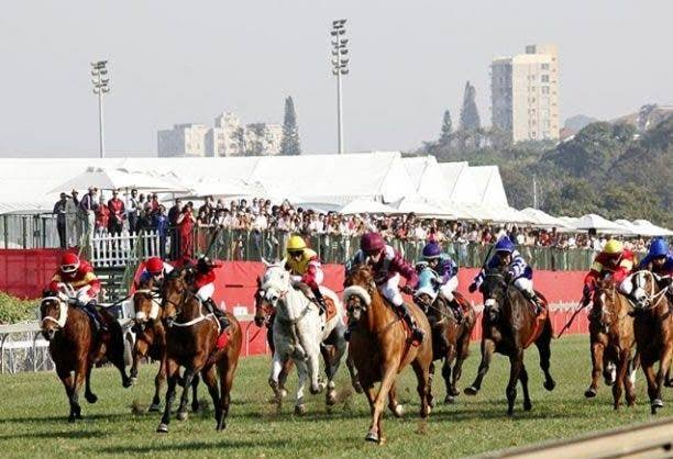 Situation right now. May the best horse win!#Retsene  #DurbanJuly<br>http://pic.twitter.com/67Vn3P2Vrv