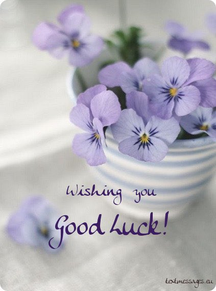 GOOD LUCK to everyone re-opening today. Stay Safe! #goodluck #staysafe #reopening #business #localbusiness #businessowner I pic.twitter.com/NMWSIYzCUI