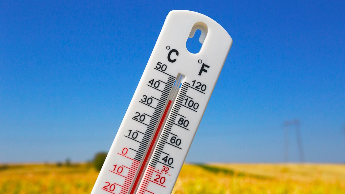Peel region is under an extended heat warning. Cool off by resting in the shade, drinking fluids, or physically distancing at splash pads and reopened malls in Brampton and Mississauga or Caledon's cooling centres. https://t.co/48K5p1GCkw