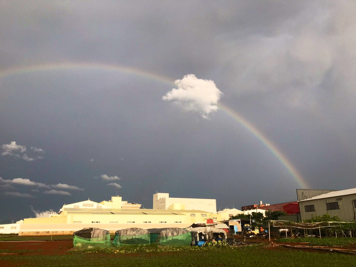 The double rainbow after the heavy rain, may everyone's wishes come true. #FoodCrisis #conscience #forest  #educators #amateurphotography pic.twitter.com/MIWh7nNxHk