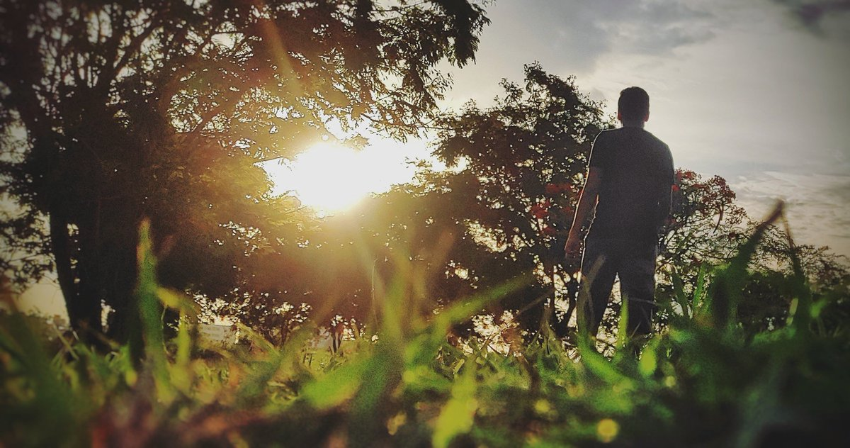 If you want to shine like a sun first burn like a sun⛅⛅-A.P.J Abdul Kalam #sunset #sunrise #grass #pocox2 #evening #walk  . . . . . . Pc:@its_me__lokesh  Ec:@revanth_darsi https://t.co/zCPSf2JIcp https://t.co/PG9FsKnoV0