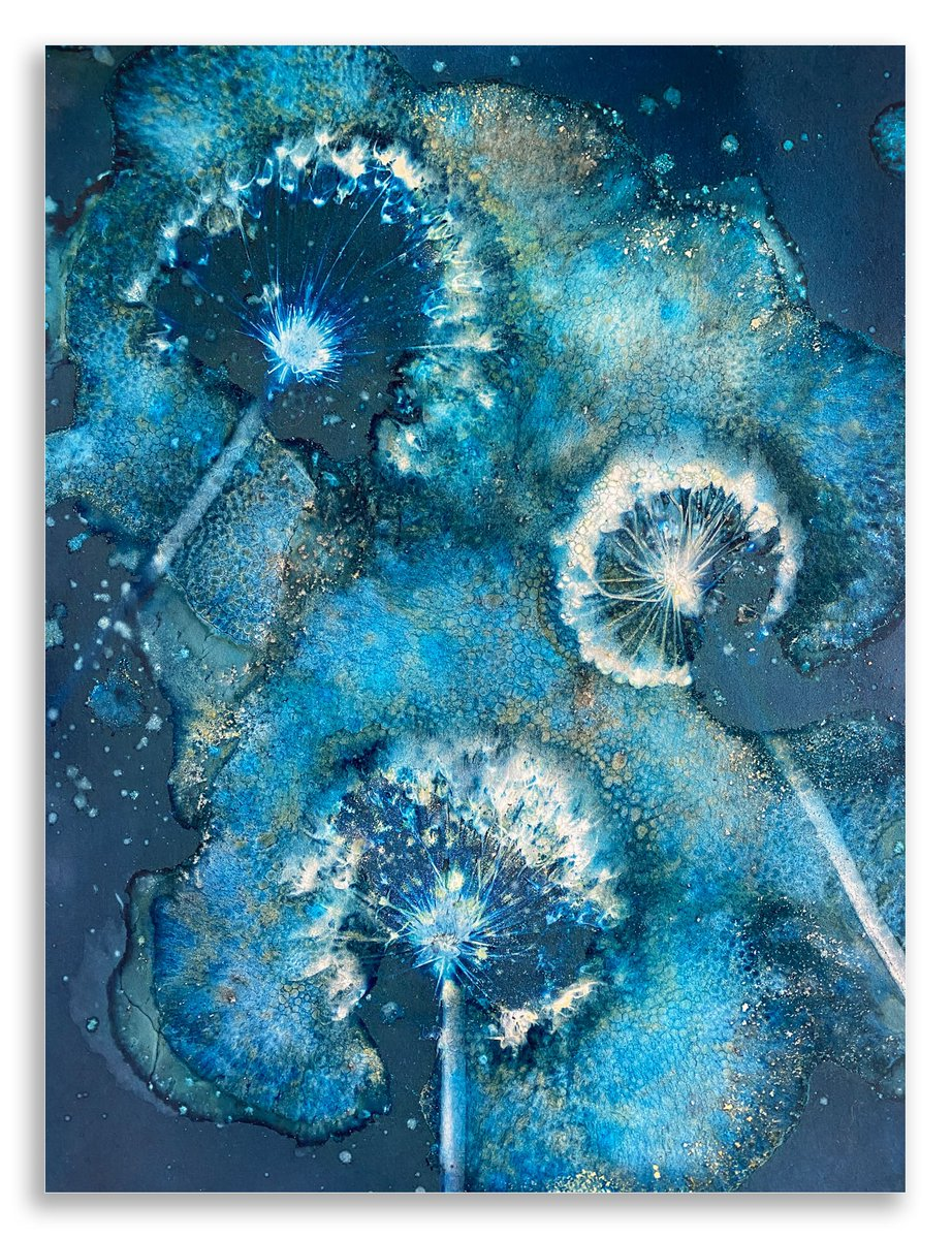 A recent cyanotype print created using alliums, salt, bubbles, vinegar, paprika, tumeric and a sprinkling of coffee grounds. #cyanotype #wetcyanotype https://t.co/TKDBDOg0to