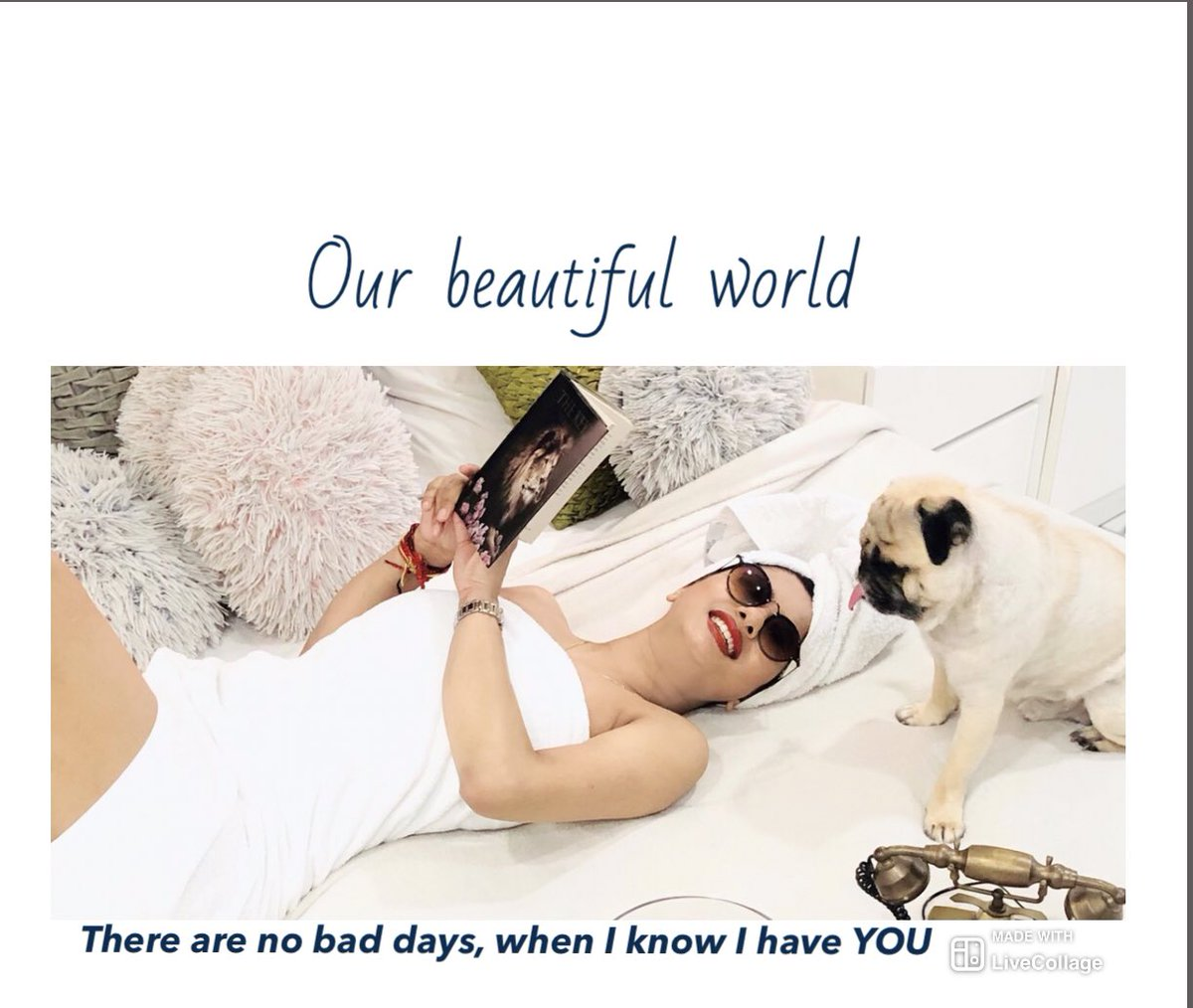 Not a Diamond but you are my Best Friend#dude #pug #ourtime #homesweethome #beautifulife #blessed #unconditionallove #djgouripic.twitter.com/zNOZbzgCwB