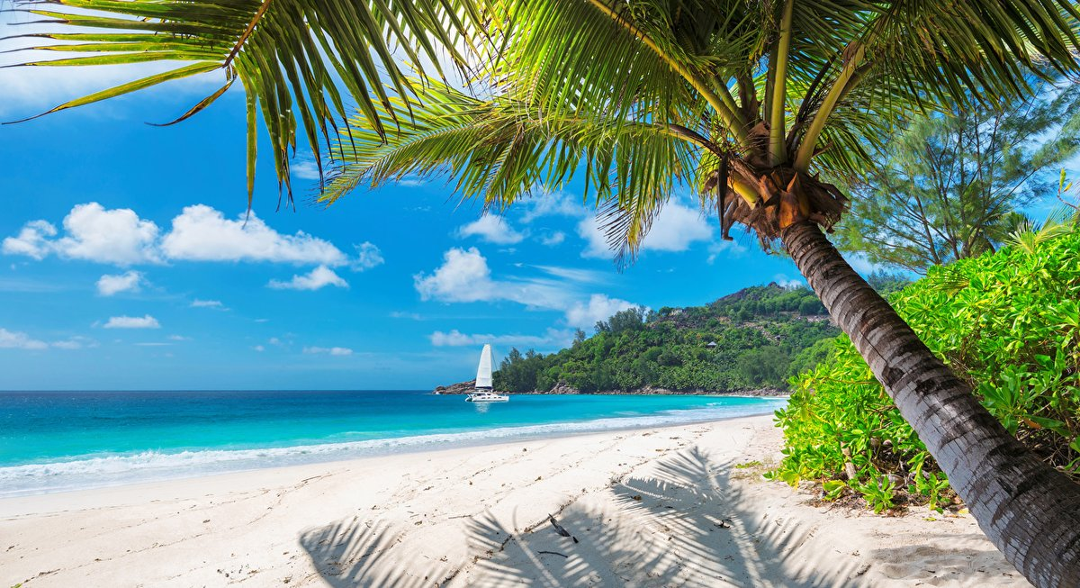 Good morning and a happy Saturday everyone. I wish all of you a wonderful and relaxing weekend. ☺⛱🌊⛵🍹🎶 #beach #sea #boat https://t.co/1XOAkoZZhX