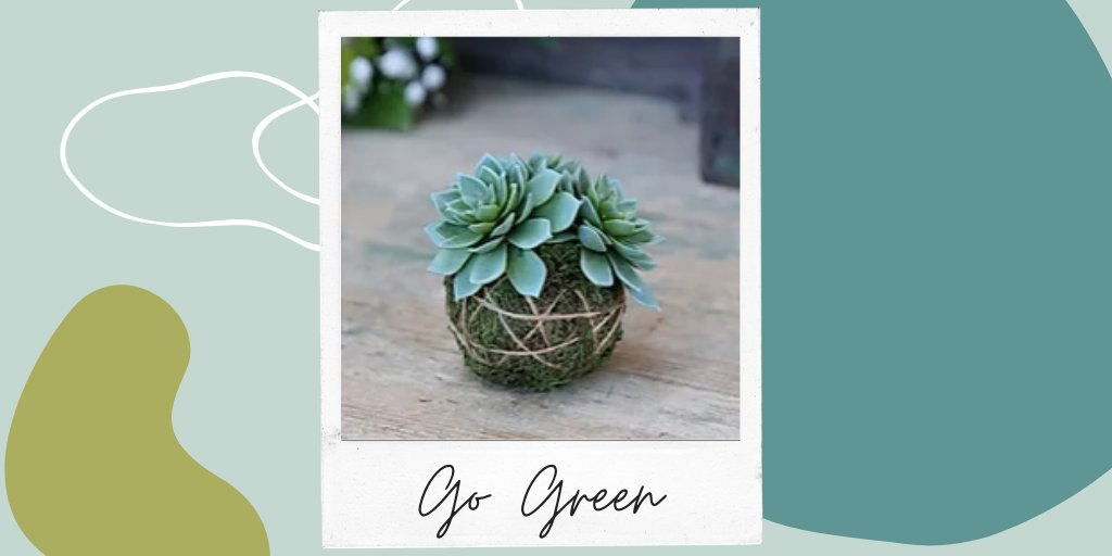 Add a splash of colour to your dining table, window ledge or desk with this artificial Sempervivum that features a rosette of tufted, light green leaves and is finished with a moss ball. Brilliantly life-like! https://www.duckandhive.co.uk/product-page/sempervivum-with-moss-ball … #artificialplants #homedecor #loveyourstylepic.twitter.com/WhnuleARla
