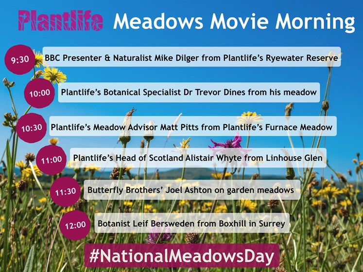Its #NationalMeadowsDay ! Throughout the day well be bringing you the sights and sounds of this wonderful habitat @Love_plants @nature_scot @CNPnature @ScotLINK @ScotWildlife @ForthNatureScot @dunnjons