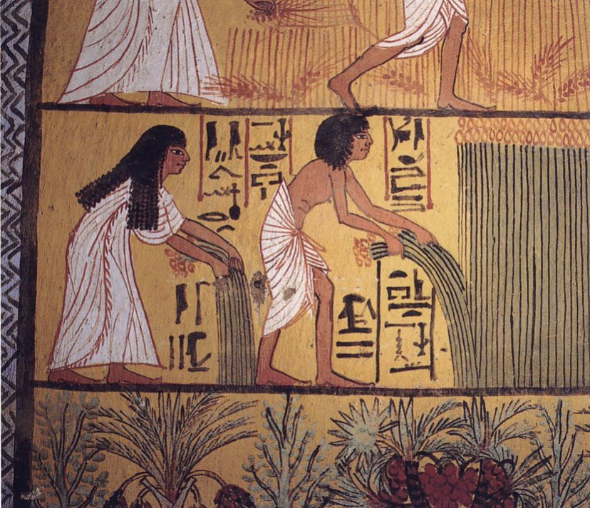 In Egyptian art parallel lines, known as Registers, were used to separate scenes and bring order to images. Battle and hunting scenes did not use Registers in order to depict chaos. This picture is of papyrus harvesters #arthistory #ancientEgypt https://t.co/V0gDbkm60e