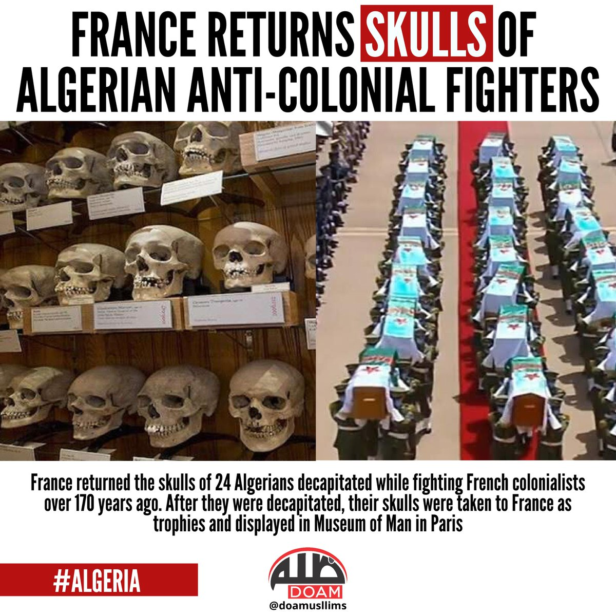 "DOAM on Twitter: ""#France Returns Skulls of #Algeria
