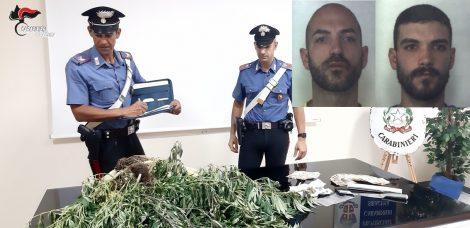 Piantagione di droga nel giardino di casa, arrestati due fratelli coltivatori - https://t.co/Yw9DdT866J #blogsicilianotizie