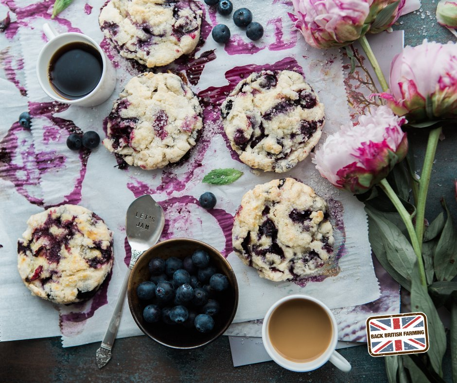 Like the look of these delicious blueberry scones? ⤵️😋 Check out our delicious recipe on Countryside Online 👉 ow.ly/cnGS50AoRvf. Make your cream tea even better by looking out for the 🇬🇧 flag and @RedTractorFood and British Lion logos when you shop #BackBritishFarming