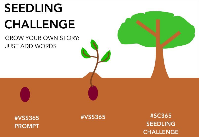 The #SeedlingChallenge is up and waiting for your words. #getwriting  https://t.co/PFP5xi0jfJ https://t.co/6mKUfYezsA