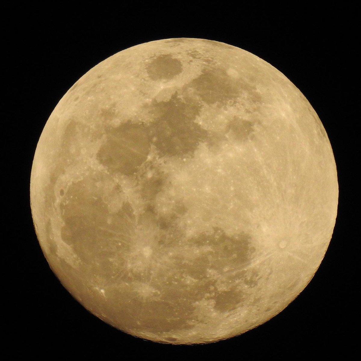 Bulannya cantik banget malam ini, ya. https://t.co/8JxLyNyO1b