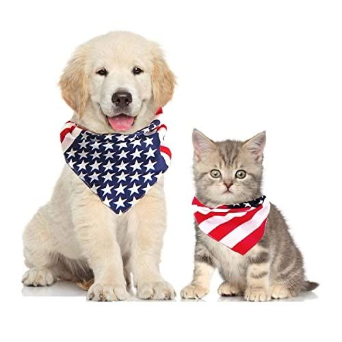 Happy 4th of July!  #doggrooming #dogsofinstagram #doggroomer #grooming #dog #petgrooming #groomer #doglover #catgrooming #catgroomer #catlover #puppy #kitten #instadog #instacat #doglife #catlife #dogparent #catparent #fortlauderdale #oaklandpark #wiltonmanors #rubyclippersflpic.twitter.com/yx5F6POGh1