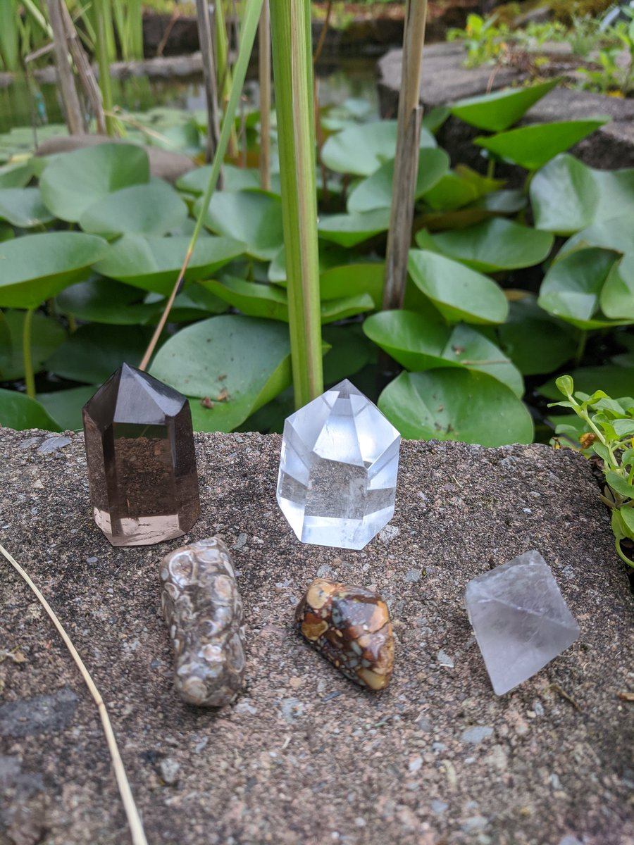 I got my smoky quartz point from @D_C_M_Jewelry last night! Did a little photoshoot with my other keepers this morning  (got a really cool quartz specimen too, which I gave to my girl for her collection ) <br>http://pic.twitter.com/E0HEcgSgd0