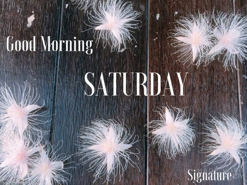 Good Morning All; Sending Many Blessings Have a Fabulous Friday!  #love #instagramers #goodmorning #tweegram #oraclereadings #humpday #fridaymorning #greetings #sun #morning #riseandshine #memeoftheday #coffee #instadaily #cbdoil #motavation #fridayvibe #universehasyourbackpic.twitter.com/KhXDDIhCBX