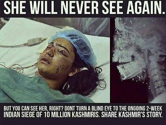 Unknown graves, land of martyr's,  half widows and full widows,  disappearances and PSA's,  custodial killings and killing at doors,  Kashmiri's are kept under wicked veil,  #KashmiriLivesMatterpic.twitter.com/qn2Xhi9DVD  by Esra Bilgiç Official